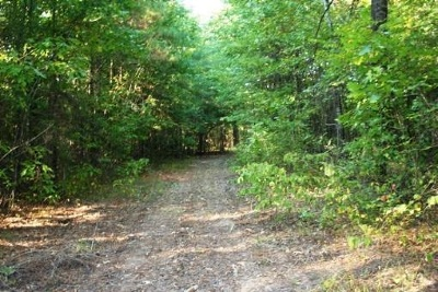 Simms Residential Lots & Land For Sale: Cr 4221