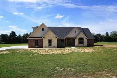New Boston TX Single Family Home For Sale: $349,900