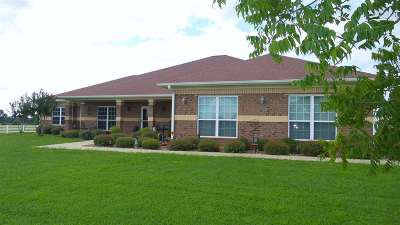 New Boston Single Family Home For Sale: 116 Fm 1840