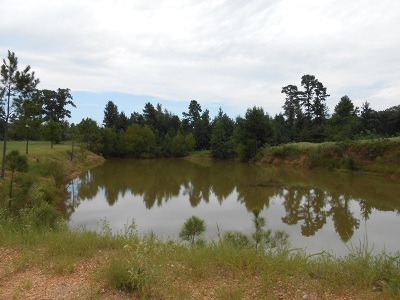Fouke Residential Lots & Land For Sale: 37.77 Acres Mc 20