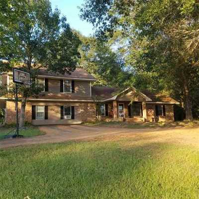 Atlanta Single Family Home For Sale: 238 County Road 4690
