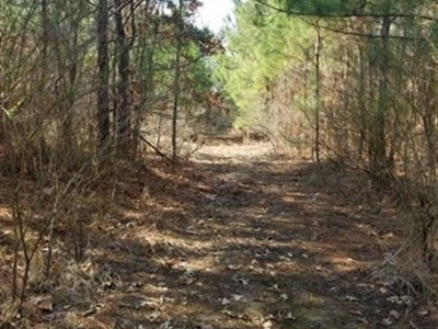 Residential Lots & Land For Sale: N Us Hwy 259
