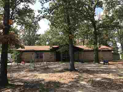 Bivins Single Family Home For Sale: 8025 Fm 1841