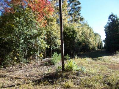 New Boston Residential Lots & Land For Sale: Tbd County Road 4102