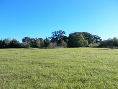 New Boston Residential Lots & Land For Sale: 4029 Fm 1840