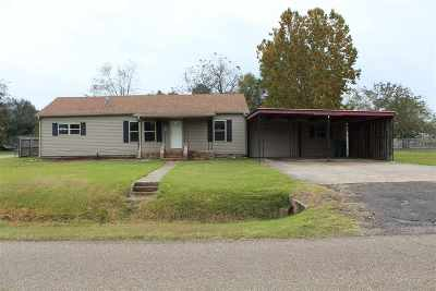 Hooks Single Family Home For Sale: 504 E Ave. E