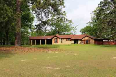 Single Family Home For Sale: 206 Tobacco Rd