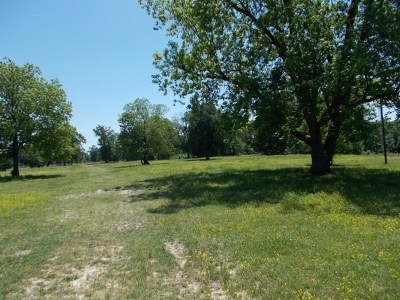 Red River County Residential Lots & Land For Sale: Tbd N Fm 911