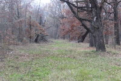 Red River County Residential Lots & Land For Sale: Cr 4640