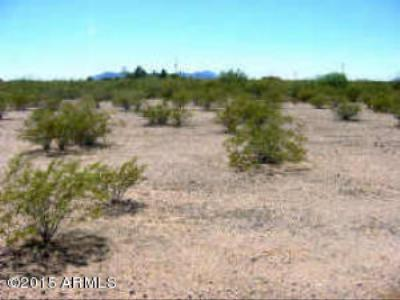 Sun City Residential Lots & Land For Sale: 14700 W 147 Avenue