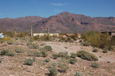 Gold Canyon Residential Lots & Land For Sale: 5211 S Gold Canyon Drive