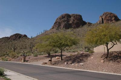 Gold Canyon Residential Lots & Land For Sale: 5249 S Gold Canyon Drive
