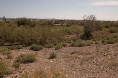 Gold Canyon East Residential Lots & Land For Sale: 5327 S Gold Canyon Drive