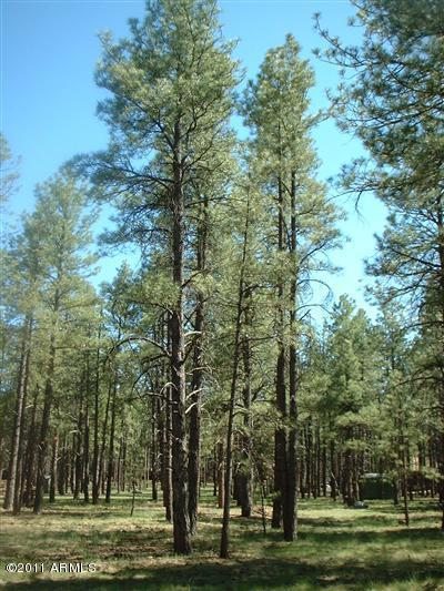 Coconino County Residential Lots & Land For Sale: 7481 E Long Bow Drive