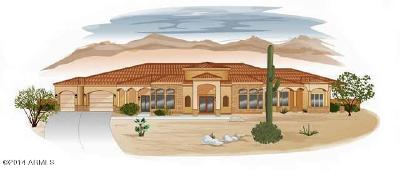 Fountain Hills Single Family Home For Sale: 16710 E Hawk Drive