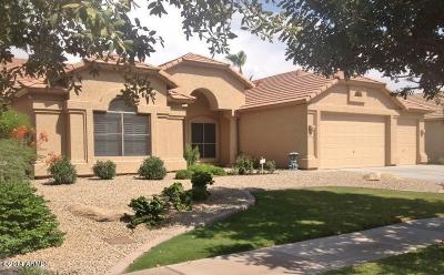 Ocotillo Lakes Rental For Rent: 4683 S Oleander Drive