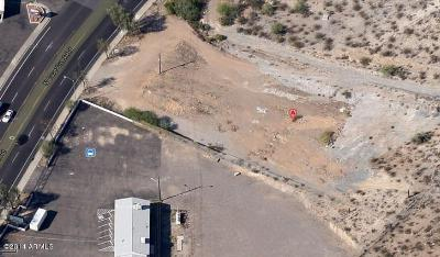 Residential Lots & Land For Sale: 11049 N Cave Creek Road