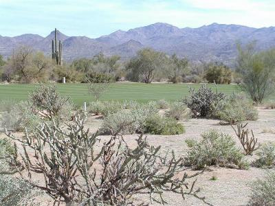 Rio Verde Residential Lots & Land For Sale: 28009 N Desierto Drive