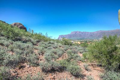 Gold Canyon East Residential Lots & Land For Sale: 9722 E Treasure Place