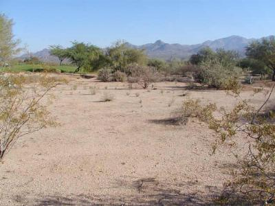 Rio Verde Residential Lots & Land For Sale: 19034 E Box Bar Trail