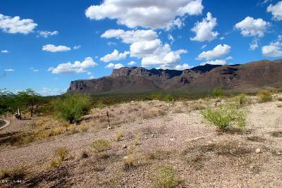 Gold Canyon Residential Lots & Land For Sale: 9369 E Skyline Trail