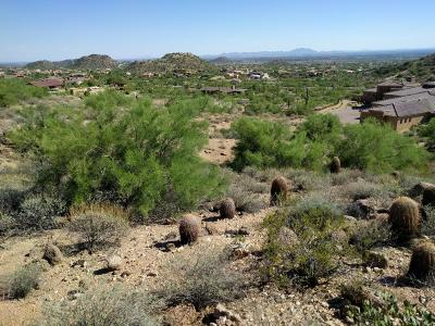 Mesa Residential Lots & Land For Sale: 3624 N Rocky Ridge Circle