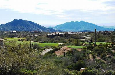Scottsdale Residential Lots & Land For Sale: 42107 N 104th Way