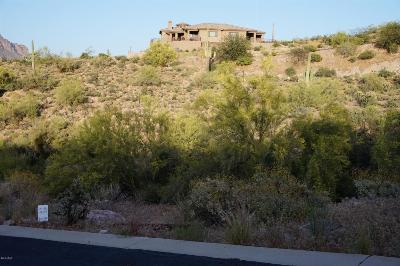 Gold Canyon Residential Lots & Land For Sale: 4229 S El Camino Del Bien Drive