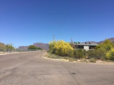Residential Lots and Land New: 5820 S Estrella Road