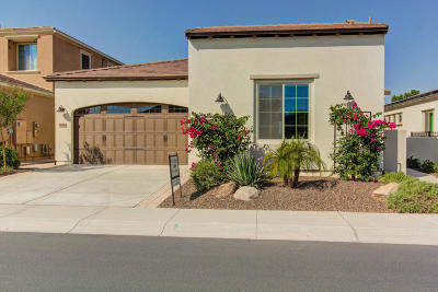San Tan Valley Single Family Home For Sale: 36480 N Crucillo Drive