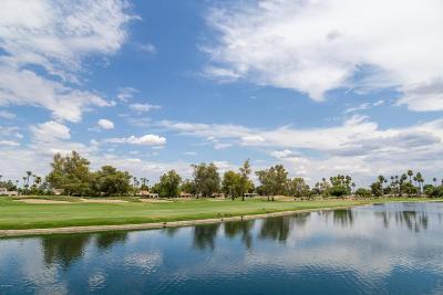 Scottsdale Single Family Home For Sale: 7654 E Via De Lindo