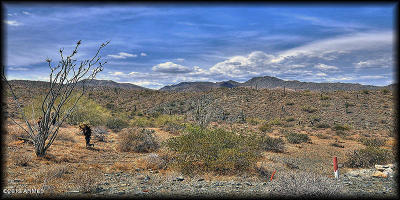 Fountain Hills Residential Lots & Land For Sale: 13842 E Coyote Way
