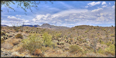 Fountain Hills Residential Lots & Land For Sale: 13926 E Coyote Way