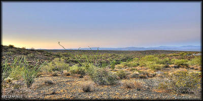 Fountain Hills Residential Lots & Land For Sale: 14024 E Coyote Way