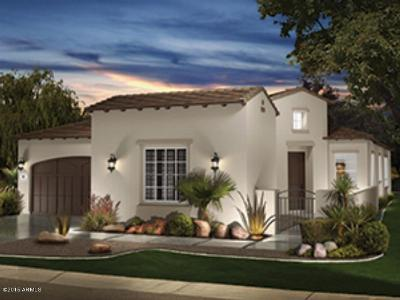Encanterra, Encanterra Country Club, Encanterra Golf And Country Club, Encanterra(R) A Trilogy(R) Resort Community, Encanterra(R) A Trilogy(R) Resort Community., Encanterra(R), A Trilogy(R) Resort Community Single Family Home For Sale: 1146 E Sweet Citrus Drive