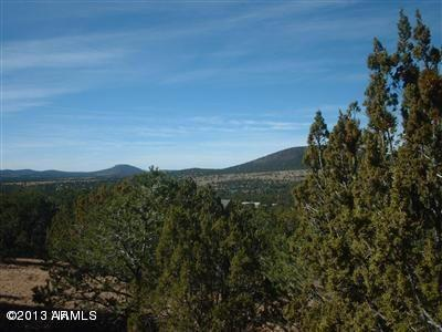 Williams AZ Residential Lots & Land For Sale: $64,500