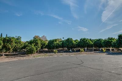 Mesa Residential Lots & Land For Sale: 3829 E Huber Street
