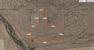 Buckeye Residential Lots & Land For Sale: 139xx W Patterson Road