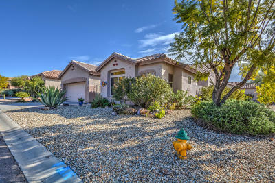 Single Family Home For Sale: 5361 S Joshua Tree Court