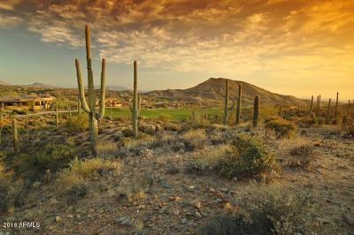 Scottsdale Residential Lots & Land For Sale: 41345 N 96th Street