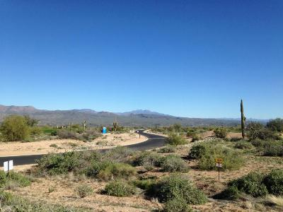 Rio Verde Residential Lots & Land For Sale: 28927 N Summit Springs Road