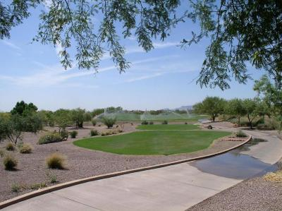 Gold Canyon Residential Lots & Land For Sale: 9267 E Superstition Mountain Drive