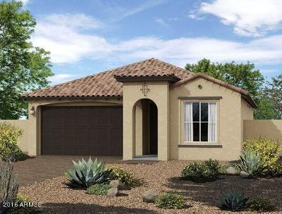 Surprise Single Family Home For Sale: 14343 W Aster Drive