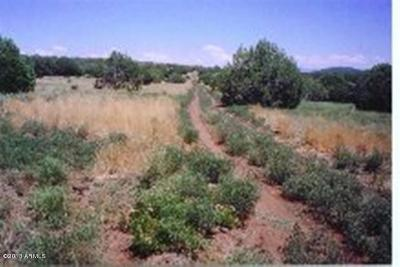 Ash Fork AZ Residential Lots & Land For Sale: $22,500