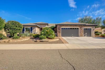 Buckeye Single Family Home For Sale: 20397 N 268th Drive