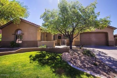 Anthem Single Family Home For Sale: 2347 W River Rock Court