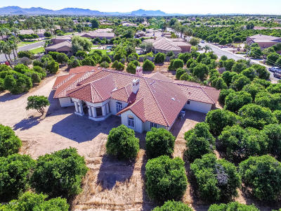 Mesa Single Family Home For Sale: 1433 N Val Vista Drive
