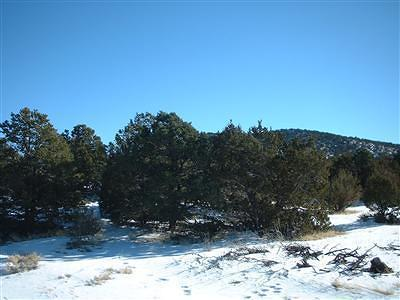 Coconino County Residential Lots & Land For Sale: 7382 N Apache Avenue