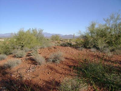 Fountain Hills Residential Lots & Land For Sale: 9030 N Desperado Drive