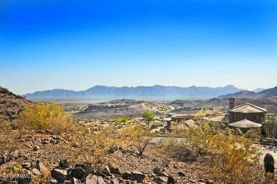 Residential Lots & Land For Sale: 1665 E Desert Willow Drive
